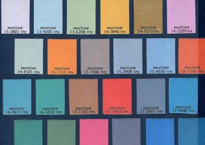Các màu sắc được lựa chọn