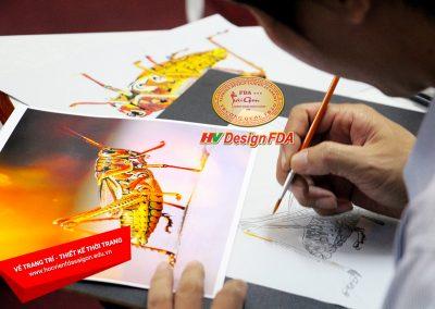 Vẽ trang trí cách điệu côn trùng