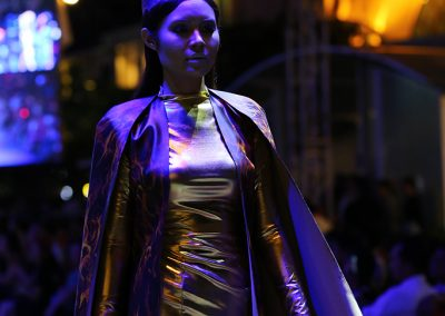 Lễ hội thời trang và công nghệ Fashionology Festival 2017